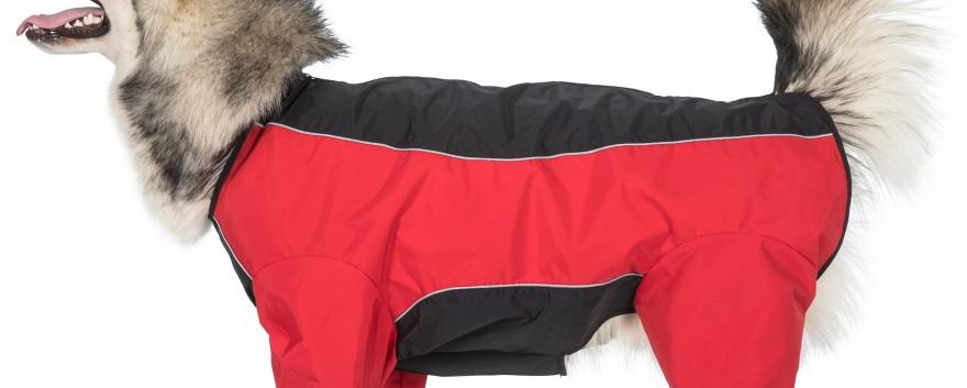 Tia Dog Coats