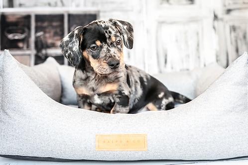 CHENILLE DOG BED - DALTON NEST