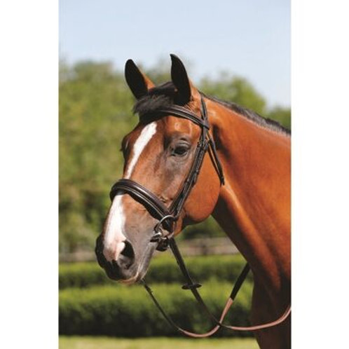 MARK TODD BRIDLE PADDED CAVESSON