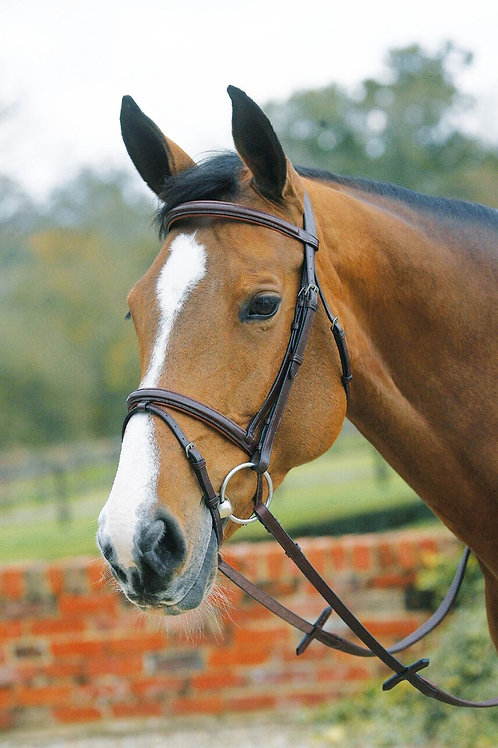 MARK TODD BRIDLE PADDED SQUARE RAISED WITH FLASH