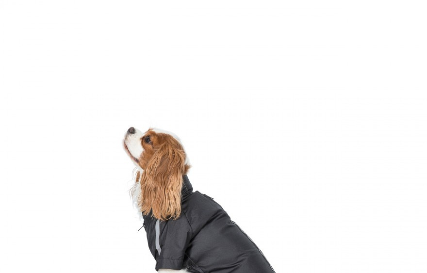 Khaos Dog Coats