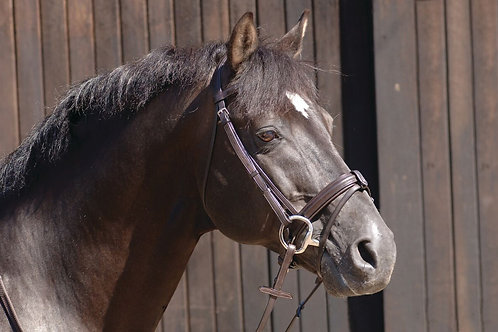 CALDENE BRIDLE DOUBLE DRESSAGE PATENT PADDED WITH REINS