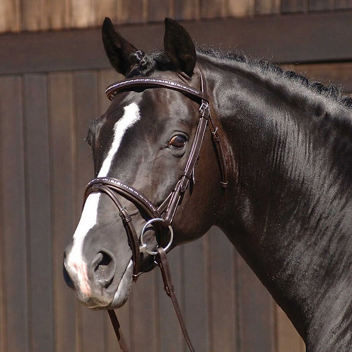 CALDENE BRIDLE FLASH PADDED/RAISED WITH REINS