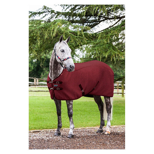 LeMieux Thermo-Cool Rug