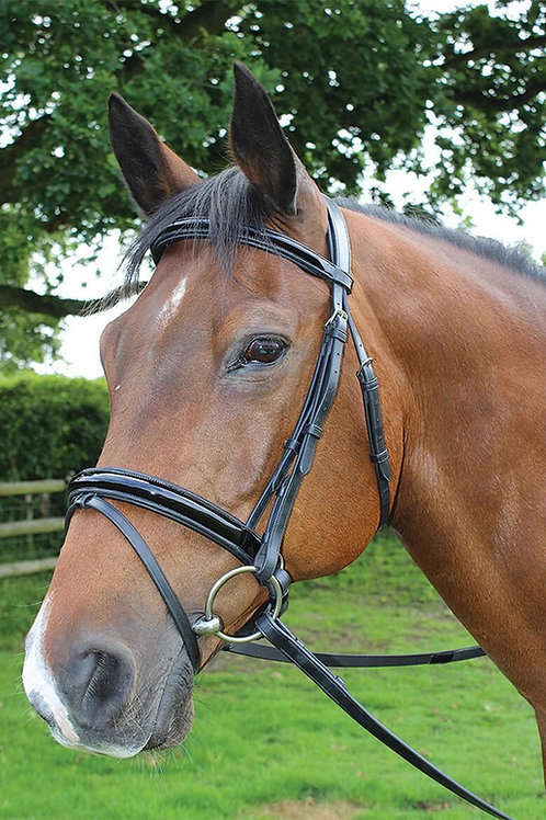 MARK TODD BRIDLE DRESSAGE PATENT