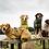 Thumbnail: SICCARO Supreme Pro Dog Drying Robe