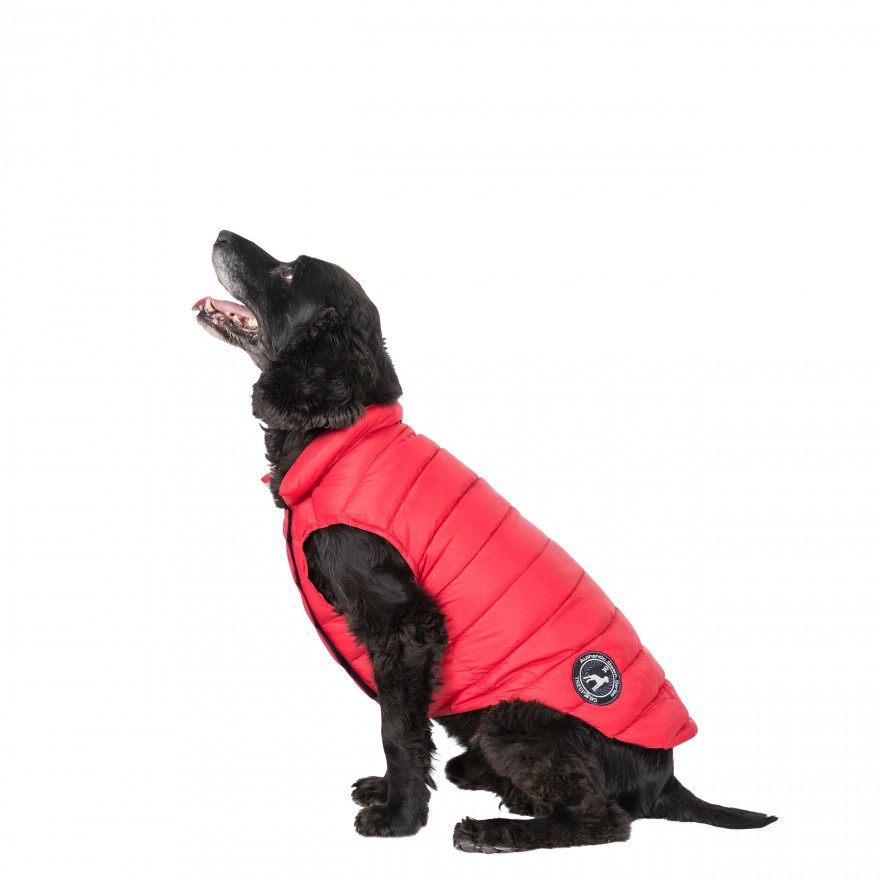 Dogby Coats