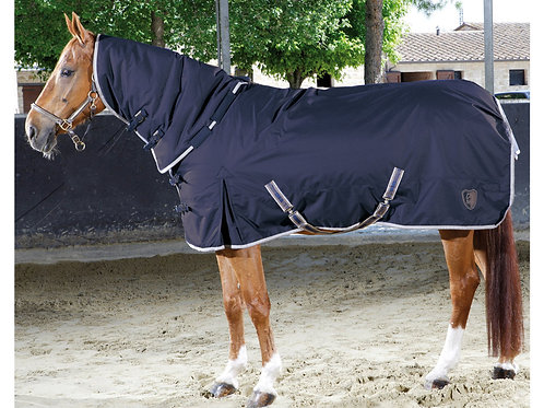 Tattini Turnout Rug With High Neck