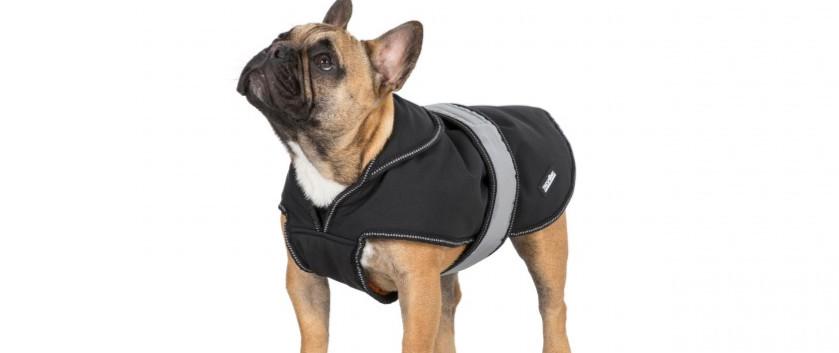 Butch Fleece Lined Softshell Dog Coat