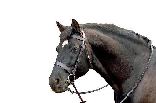 CALDENE BRIDLE PLAIN WIDE WITH REINS