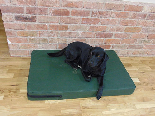 Sporting Saint Dog Bed