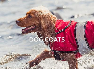 apr19-trespaws-coats.jpg