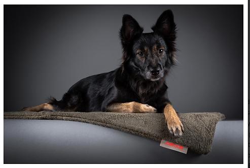 SICCARO Flex Dog Mat