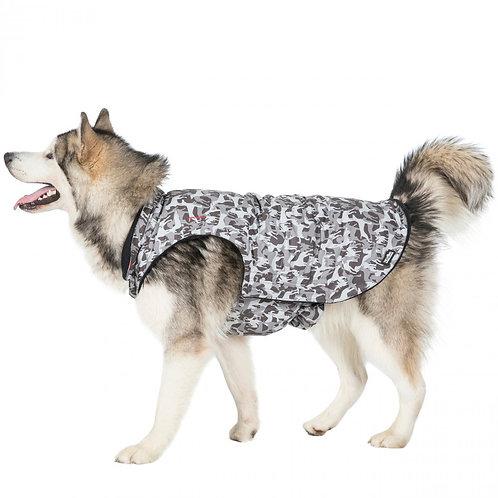 Charly Printed Waterproof Dog Coat