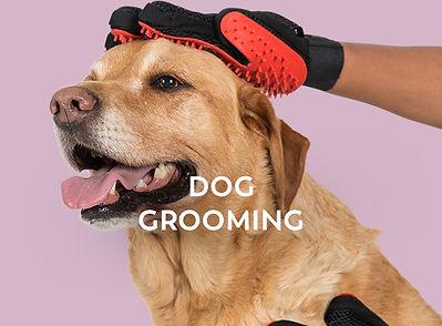 apr19-trespaws-grooming.jpg