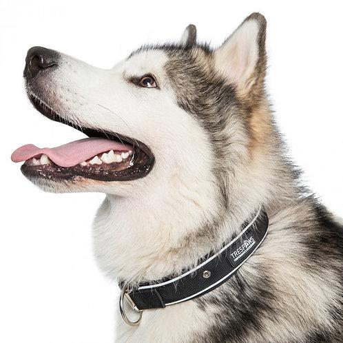 Keira S/M/L Reflective Neoprene Dog Collar