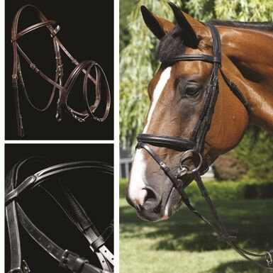MARK TODD BRIDLE PERFORMANCE FLASH