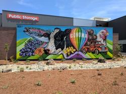 Public Storage