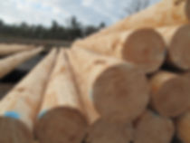 Southern Forest Products