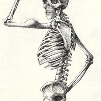 Ri-immaginiamo il nostro corpo: la Cervicale