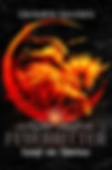 Feuerritter 2 Cover ebook.jpg
