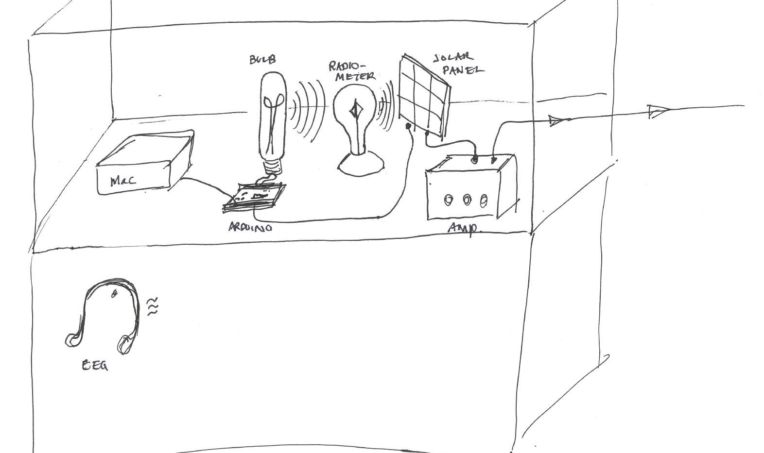 EEG collection area