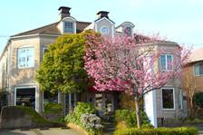 桜咲く花の西洋館