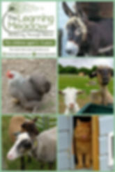 Collage 2019-07-06 22_12_24.jpg