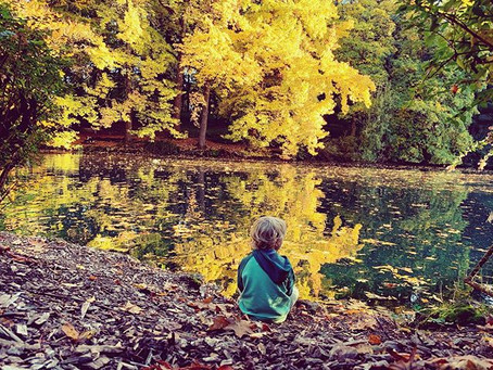 Mindfulness- sitting at the edge of the pond.