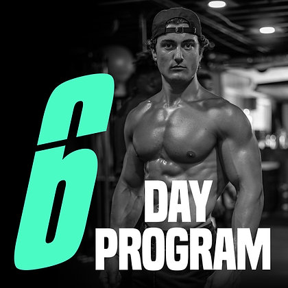 6 DAY PROGRAM