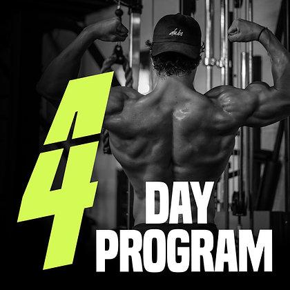 4 DAY PROGRAM