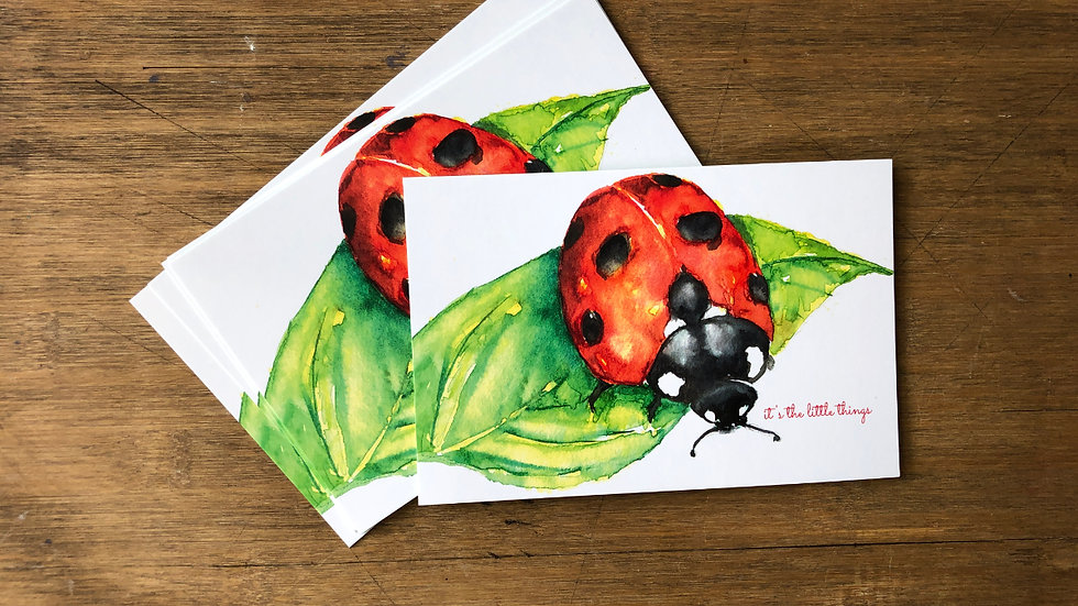 Post cards set of 6 Little Things
