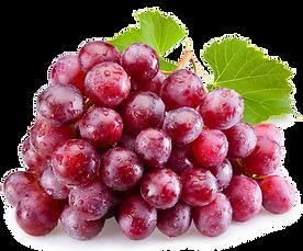 raisins-somerset.png