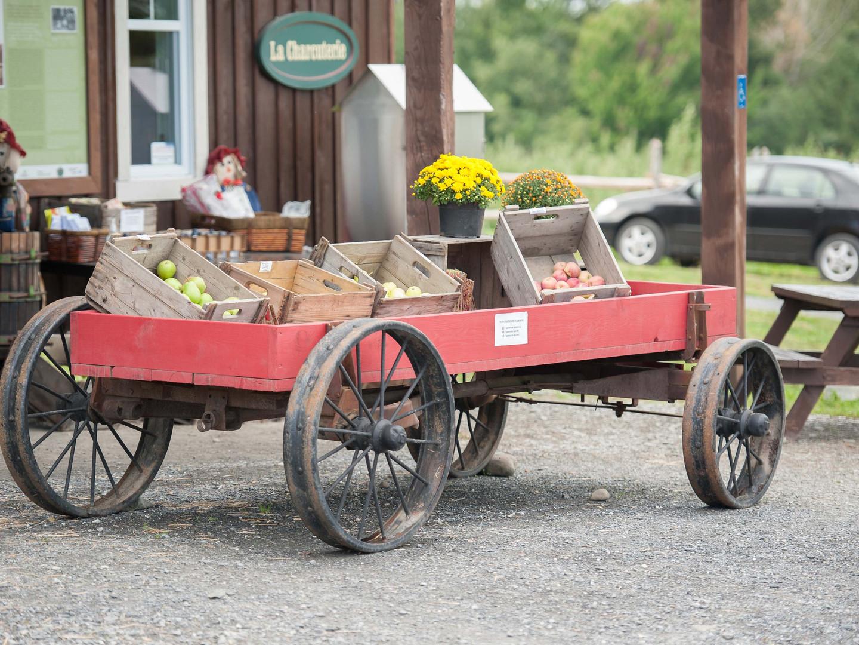Boutique Wagon 1.JPG