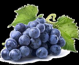 raisins-montreal-blues.png