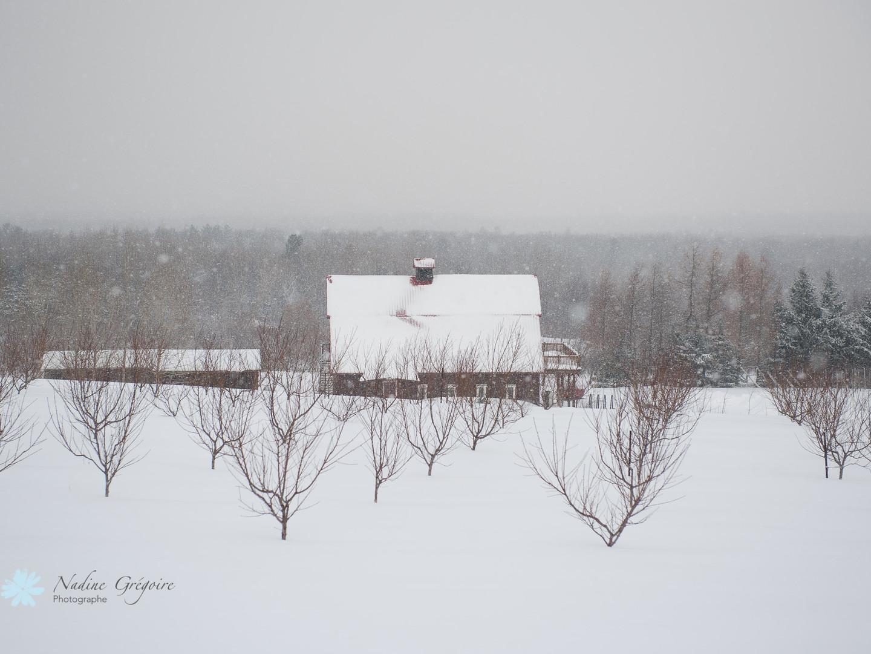 Grange_hiver.jpg