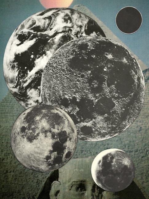 chani collage 2