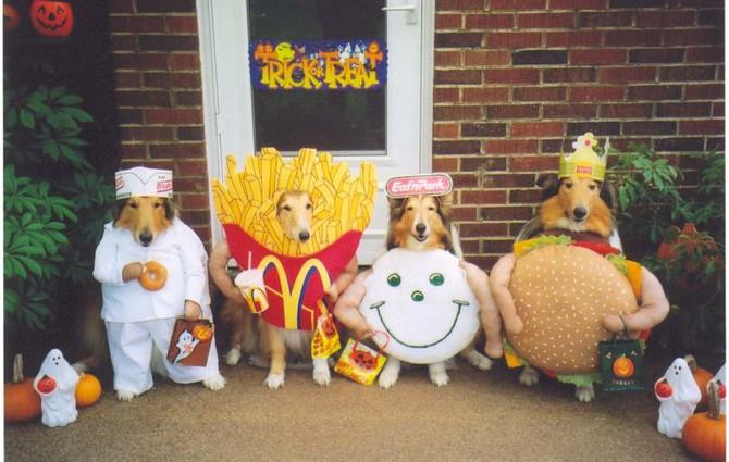 Monday 10/31/16 (Happy Halloween!)