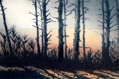 Angela Brookes - Beyond the Pinewoods ll