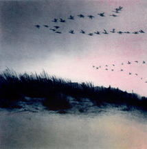 Coastal Skeins 2 (pink).jpg