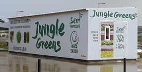 2019 Jungle Box Lisbon ICON.jpg