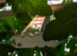 mucchi detail 02.jpg