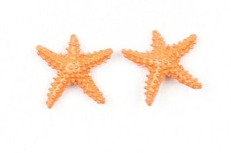 Starlight Shimmer Post Earrings - Star Fish