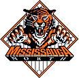 mississauga mnba_tigers