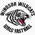 Windsor wildcats girls fastball
