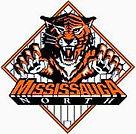 Mississauga north mnba tigers