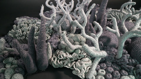 crocheted grey coral reefs