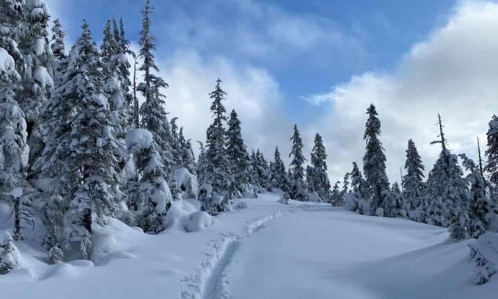 winter1_edit.jpg