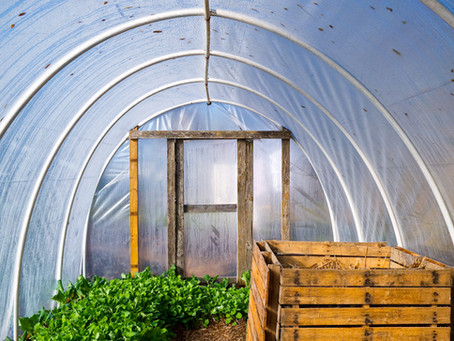 Build your own mini greenhouse