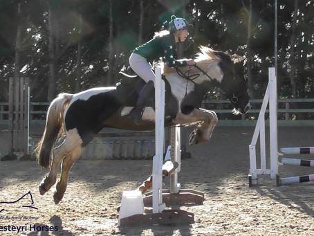 Jazz | Inca | Shirley ~ Moores Farm Equestrian Centre
